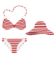 Summer hat and bikini vector image