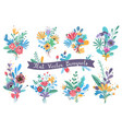 bouquets garden blooming flowers colorful floral vector image