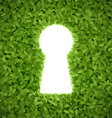 Green leaves with keyhole vector image vector image