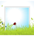 spring background pane with flowers vector image vector image