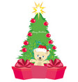 bear in santa claus hat vector image