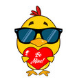 cute yellow chick with sunglasses vector image vector image