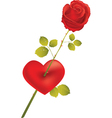 rose with heart vector image vector image