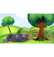 scene with gorilla sleeping under tree vector image