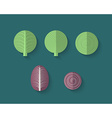 A set of Vegetables in a Flat Style - Cabbage vector image