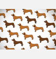 awesome greeting horizontal card with dogs breed vector image vector image