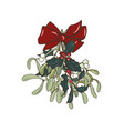 christmas plants vector image