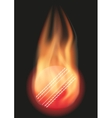 Cricket ball with flame vector image vector image