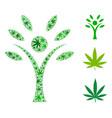 eco man collage of marijuana vector image