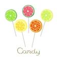 Fruit lollipops on stick vector image vector image