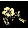 Golden twig blossoms vector image vector image