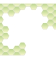 hexagonal frame vector image