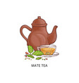 mate tea - traditional hot drink from yerba herb vector image vector image