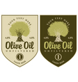 Oil olive vector image