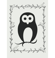 Owl bird in frame vector image