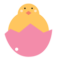 Cute beautiful baby chicken isolated on white vector image
