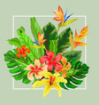 abstract exotic tropical leaf and flowers vector image vector image