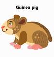 cartoon guinea pig vector image vector image