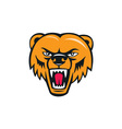 grizzly bear angry head cartoon vector image vector image