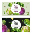 realistic vegetables banners set vector image