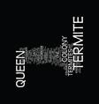 termite queen text background word cloud concept vector image vector image