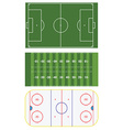 Three sports fields vector image