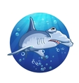 Hammerhead shark cartoon image vector image