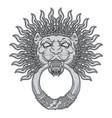 silver lion head on black background door