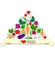 Vegetables card vector image
