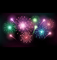 bright colorful fireworks sparkles shining on vector image vector image