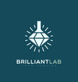 brilliant lab logo vector image