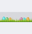 colorful easter eggs on a grass on transparent vector image vector image