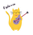 funny cat playing guitar vector image vector image