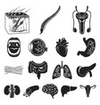 internal organs of a human black icons in set vector image vector image