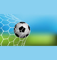 realistic football in net vector image vector image