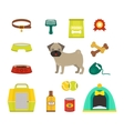 Pug dog symbols vector image