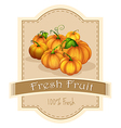 A fresh fruit label with a group of pumpkins vector image vector image