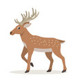 cute forest animal cartoon deer with long horns vector image