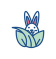 leaves with cute rabbit line style icon vector image vector image