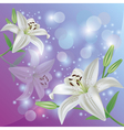 Lily flower background greeting or invitation card vector image vector image