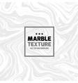 marble texture vector image vector image