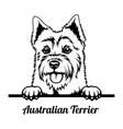 peeking dog - australian terrier breed - head