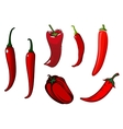 Red hot chilli cayenne and bell peppers vector image vector image