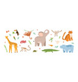 set cute jungle animals collection exotic vector image
