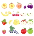 set of isolated fruits and berries vector image vector image