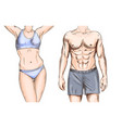 athletic couple young male and female full color vector image