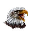 bald eagle head portrait from a splash of vector image vector image