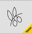 black line olives branch icon isolated on vector image vector image