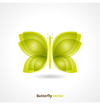 Butterfly Backgrund vector image vector image