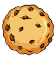Crunchy brown cookie vector image vector image